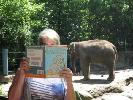 Elephant + elephant at Woodland Park Zoo