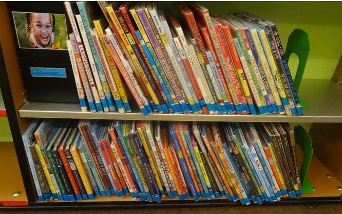 genre pic books