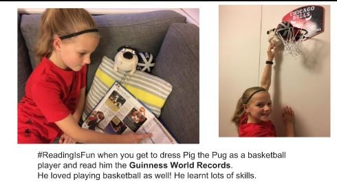 Pig the Pug in Australia